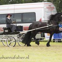 DK Ester Reen met Feye van de Fabienehoeve (v. Fabe) (Wijnjewoude) 20160611 DSC 2767
