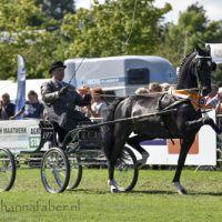 HU Andre Veltkamp met Sir Arie (Opmeer) 20160801 DSC 5831