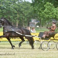 DK Andries fan e Huchten (v. Arjen) met Margrietha Algra 3866 20170603