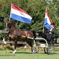 DK Amaretto (v. Hofmeester) met Evelien Langerijs 2444 20170709