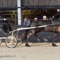 Bommelsteyns Swaen (v. Alwin) met Henk Hammers 6382 20180414