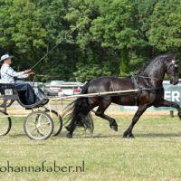 DK Egberdina's Lodewijk (v. Maurus) met Susan Bouwman 4697 20180707