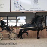 HD Egberdina's Lodewijk (v. Maurus) met Susan Bouwman 1664