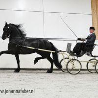 Bommelsteyns Valentina (v. Alwin) met Henk Hammers 2156