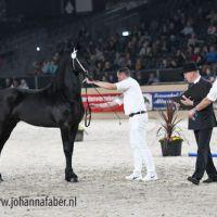 Aart fan Osterberg (Beart x Doaitsen) 7493