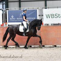 Anita fan Henswoude BK (Wimer 461 x Eibert 419) 6039