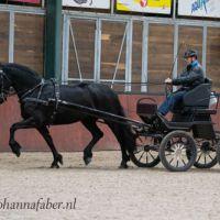Daphne van de Zwarte Parels (Meinte 490 x Olgert 445) 3137 20210304
