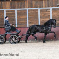 Auke van Hilberalti (Jouwe 485 x Norbert 444) met Tsjalling de Boer 5075 20210625