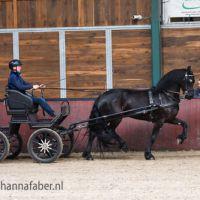 Gelbrich fan 'e Hameren (Jurre 495 x Brandus 345) 1809 20210916